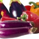 http://agrariya.com/images/avatar/group/thumb_55984bd70f1521080bac6c0a6f329fc0.jpg