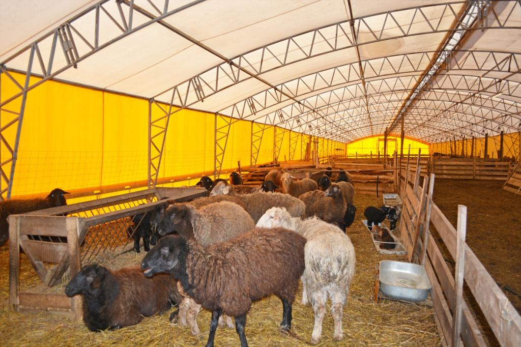 Как сделать загон для овцы 70