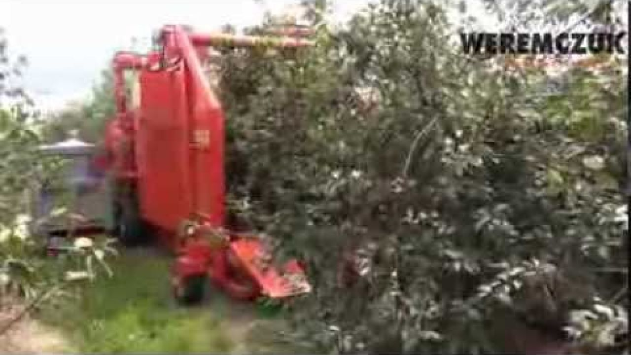 Комбайн Felix Z для механизированной уборки вишни и черешни